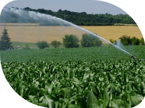 Irrigation si
